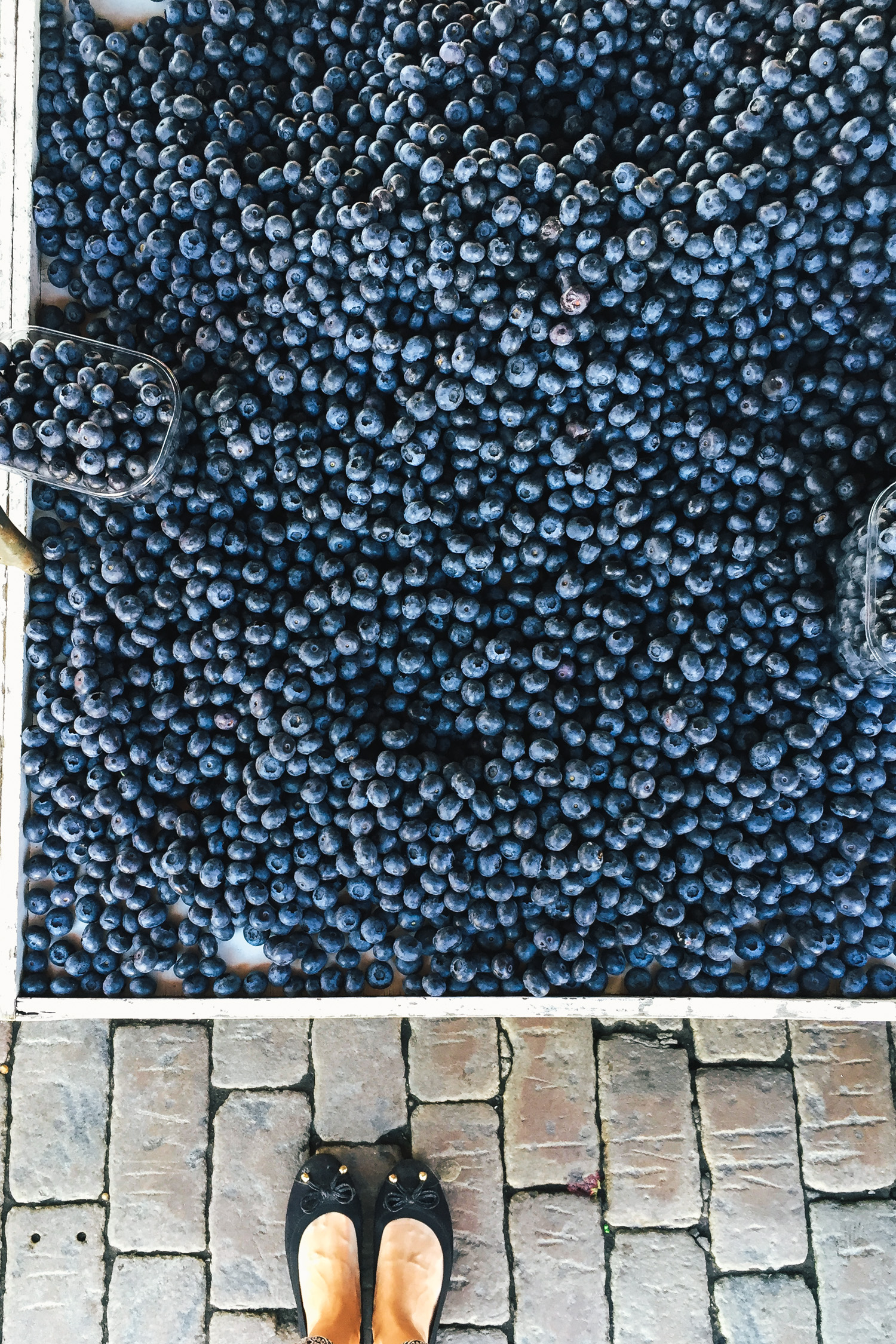 Cold Blueberry Soup - A Recipe from Finland