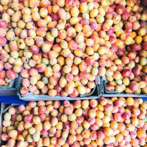 Granola with Turkish Summer Apricots