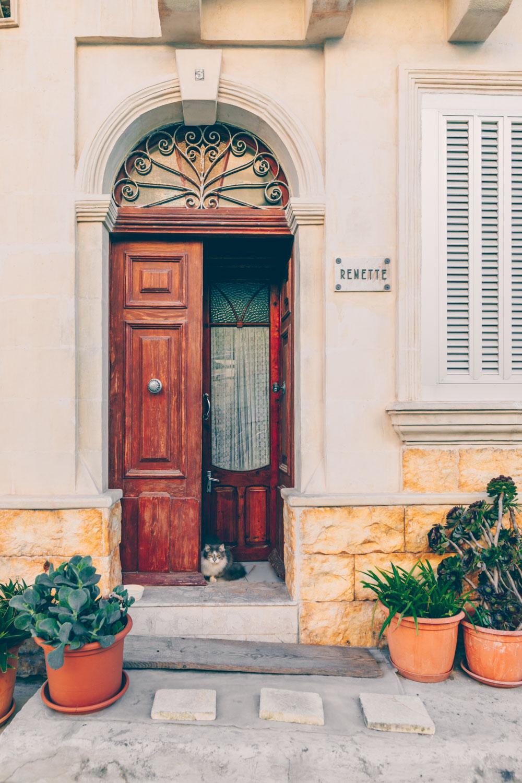 A Quick Food Guide to Valletta & Malta by Kati of black.white.vivid.